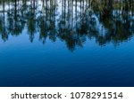 trees reflecting from surface... | Shutterstock . vector #1078291514