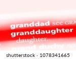 granddaughter word in a...   Shutterstock . vector #1078341665