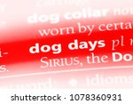 Small photo of dog days word in a dictionary. dog days concept