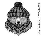 grizzly bear big wild bear cool ...   Shutterstock .eps vector #1078446671