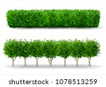 bush in the form of a green... | Shutterstock .eps vector #1078513259