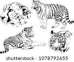 vector drawings sketches... | Shutterstock .eps vector #1078792655