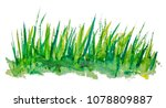 green grass watercolour... | Shutterstock . vector #1078809887