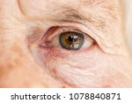 Close Up Image Of Old Woman's...