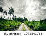dirt road going into a forest...   Shutterstock . vector #1078841765