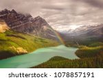 Snecin View Of Peyto Lake And...