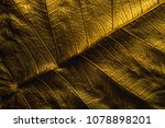 close up patterns on gold leaf... | Shutterstock . vector #1078898201