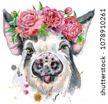 A Beautiful Pig In Black Spots...
