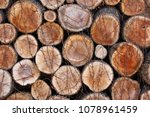 background of firewood  wood... | Shutterstock . vector #1078961459