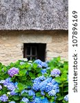 Details Of A Thatched Cottage...