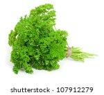 fresh parsley | Shutterstock . vector #107912279