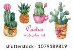 watercolor set of succulent... | Shutterstock . vector #1079189819