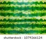 striped crust of watermelon ... | Shutterstock . vector #1079266124