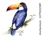 watercolor illustration of... | Shutterstock . vector #1079422589