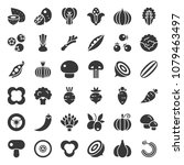 vegetable icon set 2 2  solid... | Shutterstock .eps vector #1079463497