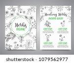 herbs and wild flowers. hand... | Shutterstock . vector #1079562977