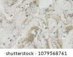 white synthetic rock background ... | Shutterstock . vector #1079568761