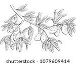 almond nut graphic black white... | Shutterstock .eps vector #1079609414