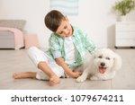 little boy and bichon frise dog ... | Shutterstock . vector #1079674211