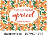 vector illustration of apricot... | Shutterstock .eps vector #1079674844