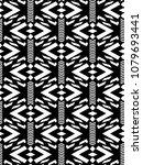 seamless vector tribal pattern...   Shutterstock .eps vector #1079693441