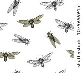 vector illustration. cicadas .... | Shutterstock .eps vector #1079696945