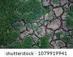 grass on cracked ground | Shutterstock . vector #1079919941