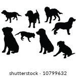 Stock vector golden retriever silhouettes vector 10799632