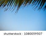 palm tree framed sky tropical... | Shutterstock . vector #1080059507