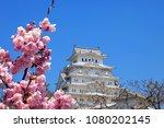 himeiji castle in spring cherry ...   Shutterstock . vector #1080202145