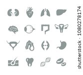 medical flat one color internal ... | Shutterstock .eps vector #1080278174