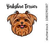 yorkshire terrier dog breed.... | Shutterstock .eps vector #1080290387
