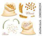 agricultural cereals   wheat... | Shutterstock .eps vector #1080380294