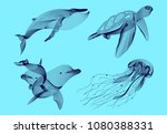 set marine graphic animals.... | Shutterstock .eps vector #1080388331