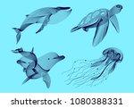 set marine graphic animals.... | Shutterstock .eps vector #1080388331