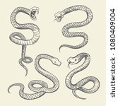 hand drawing snake set.... | Shutterstock .eps vector #1080409004