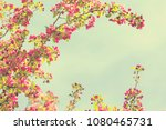 spring blossom with pink tree...   Shutterstock . vector #1080465731