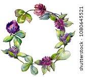 wildflower clover flower in a... | Shutterstock . vector #1080645521