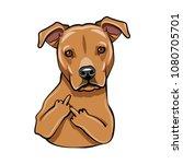 staffordshire terrier dog.... | Shutterstock .eps vector #1080705701