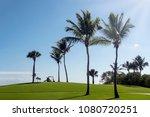 golfcars on the golf course ... | Shutterstock . vector #1080720251