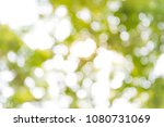 blurred bokeh background from a ... | Shutterstock . vector #1080731069