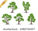 collection  beautiful tree... | Shutterstock .eps vector #1080734357