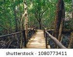 wooden bridge in dense forest.... | Shutterstock . vector #1080773411