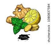 ginger  lemon and mint vector... | Shutterstock .eps vector #1080837584