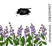 sage vector drawing border.... | Shutterstock .eps vector #1081054907
