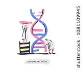scientist exploring dna... | Shutterstock .eps vector #1081109945