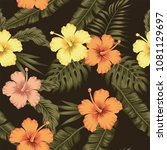 flowers hibiscus yellow orange... | Shutterstock .eps vector #1081129697