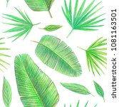 hand drawing tropical plants.... | Shutterstock . vector #1081163501
