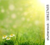 green grass on the green... | Shutterstock . vector #108127655