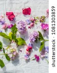 summer  floral  artistic...   Shutterstock . vector #1081303859